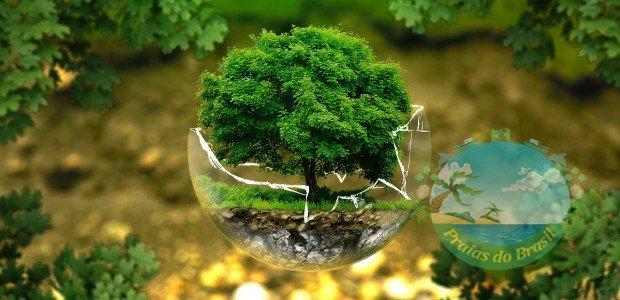 Você ajuda a proteger a natureza? ou vive só falando e não faz nada? Saiba como fazer sua parte na conservação do planeta.