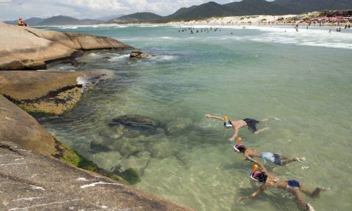 Férias na praia e álcool em gel na mala: saiba como o brasileiro vai viajar após a pandemia
