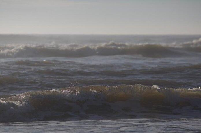 O que explica o atual mar claro e morno nas praias do Litoral Norte